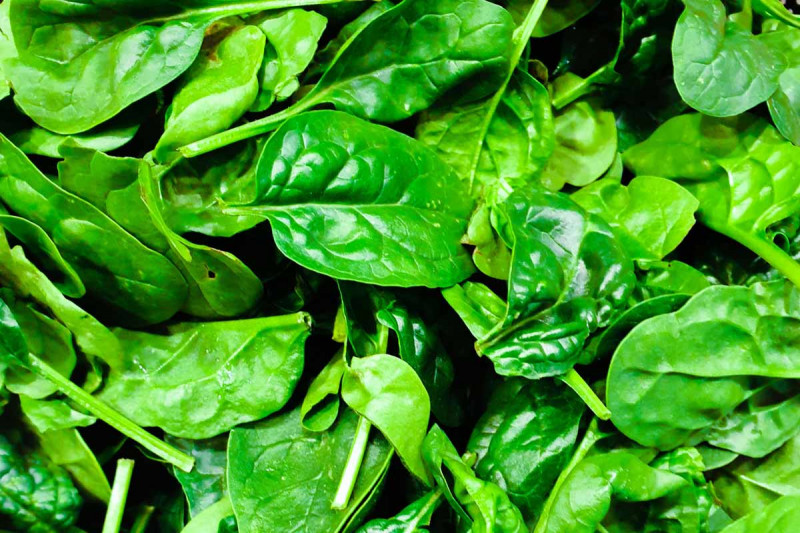 spinat wuerzen zubereiten wuerztipp bremer gewuerzhandel