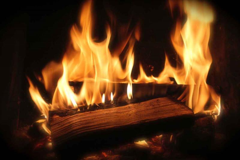 Feuer Flammen Holzscheite Bremer Gewuerzhandel