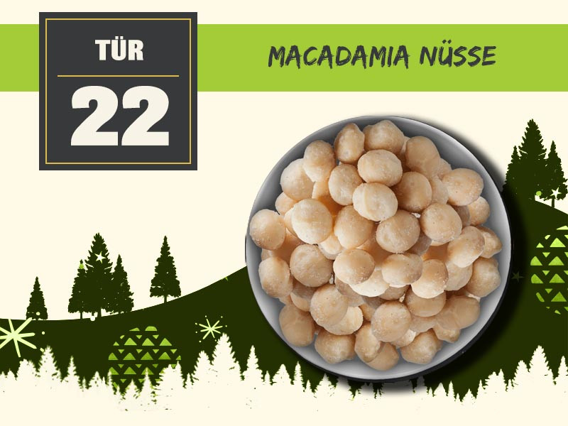 22 macadamia