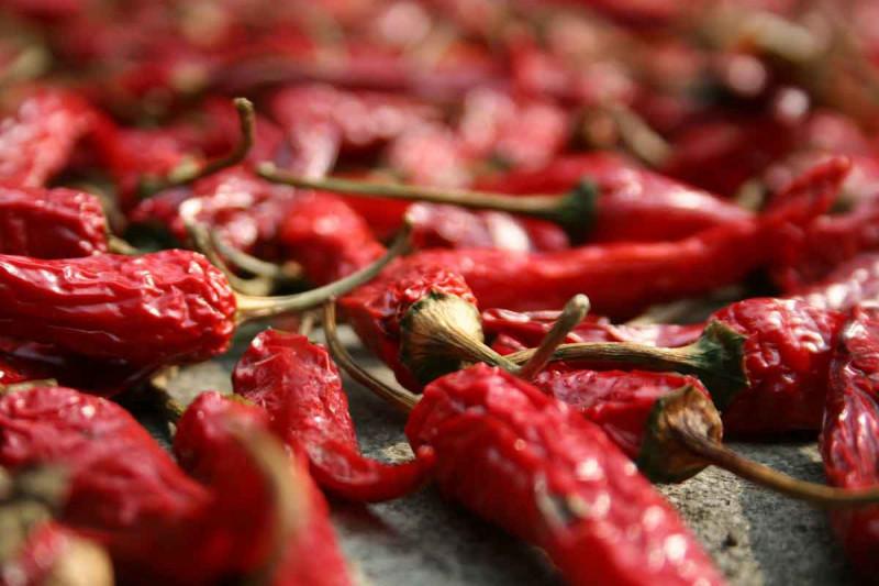 Chili getrocknet rot Bremer Gewuerzhandel
