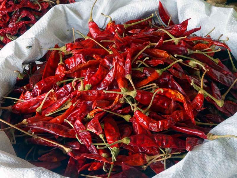 Chili getrocknet rot Sack Bremer Gewuerzhandel