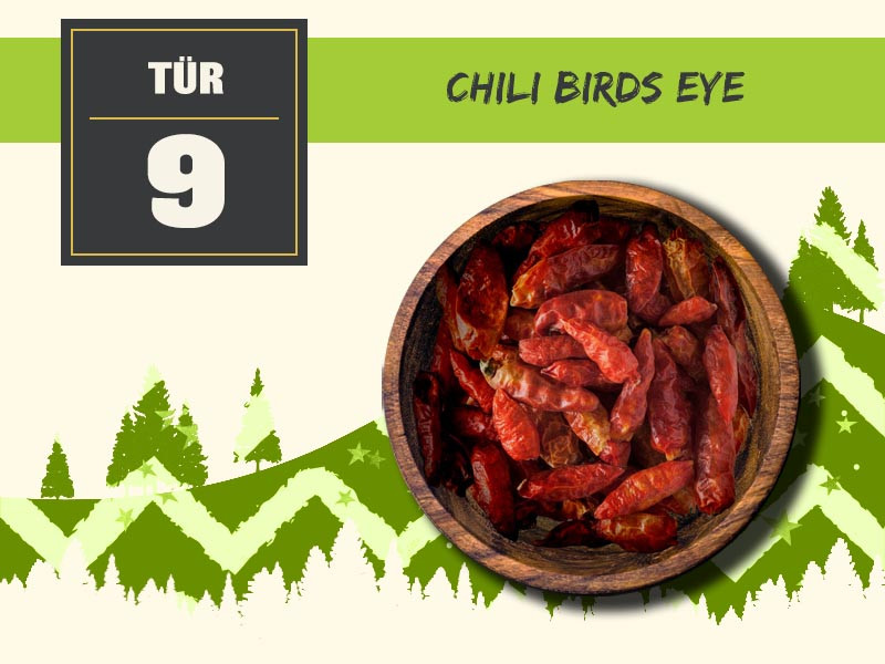 09 chili birds eye