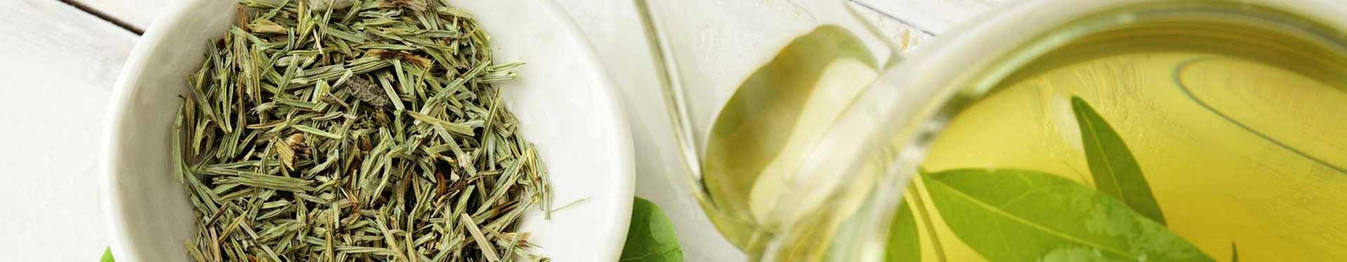 Grüner Tee ♥ Grüntee