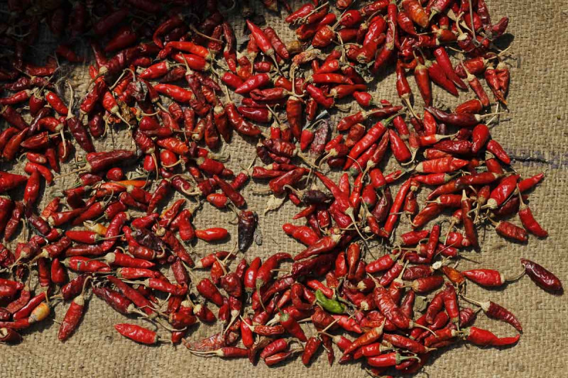 Chilis rot getrocknet Jutesack Bremer Gewuerzhandel